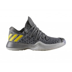 BW1093_Chaussures de Basketball adidas Harden BE Grise pour junior