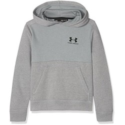 1320134-035_Sweat à capuche Under armour cotton Fleece Hoody Gris Pour Enfant