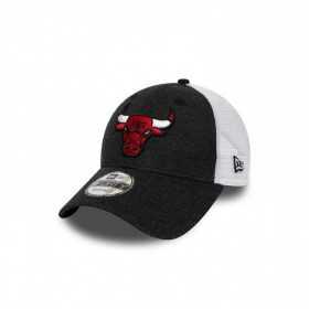 11945631_Casquette NBA Chicago Bulls New Era Summer League Trucker 9Forty Gris