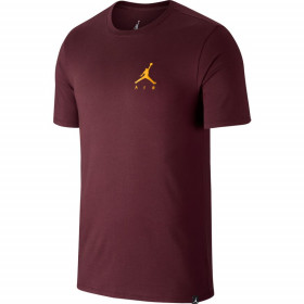 AH5296-681_T-Shirt Jordan Sportswear Jumpman Air Embroidered Marron pour Homme
