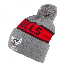 Chicago Bulls_Bonnet NBA Chicago Bulls Mitchell & Ness Team Tone Gris
