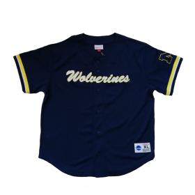 Maillot de Baseball NCAA Michigan Wolverines Mitchell & ness Mesh bleu marine pour Homme