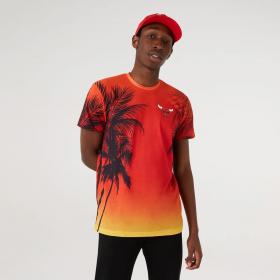 T-Shirt NBA Chicago Bulls New Era Summer city Rouge pour homme
